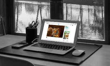 Run Windows 98 OS in your Browser - Waftr com