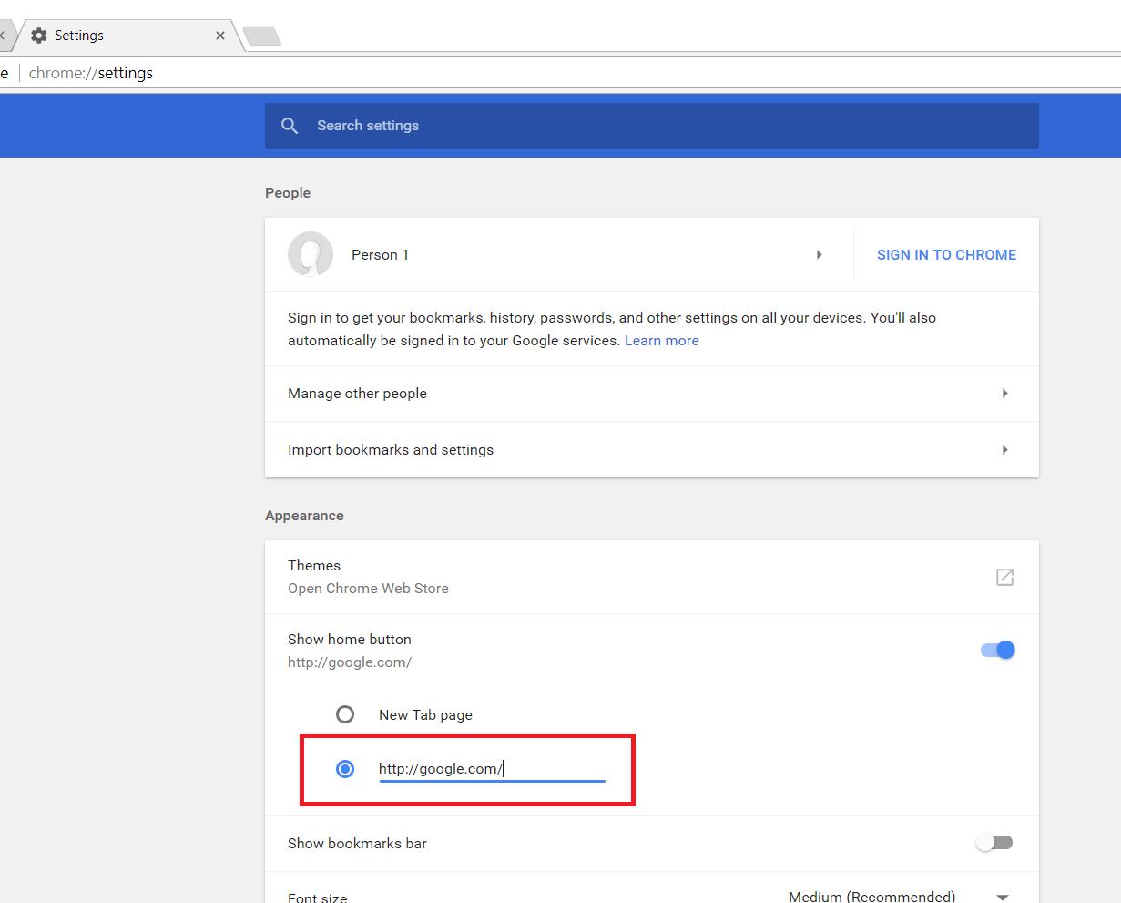 type google.com in homepage URL