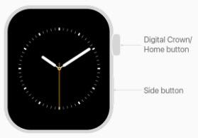Screensot on Apple Watch
